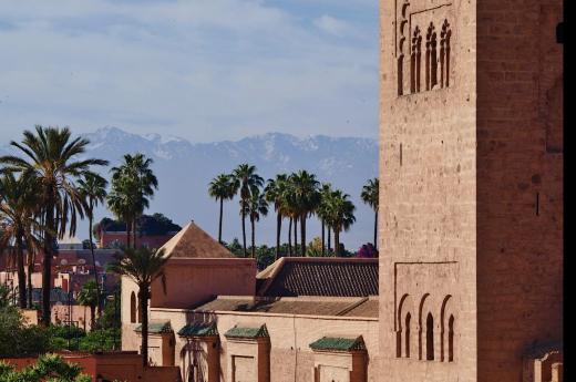 Palmy v horkém Marrákeši, za ním zasněžené hory Atlasu