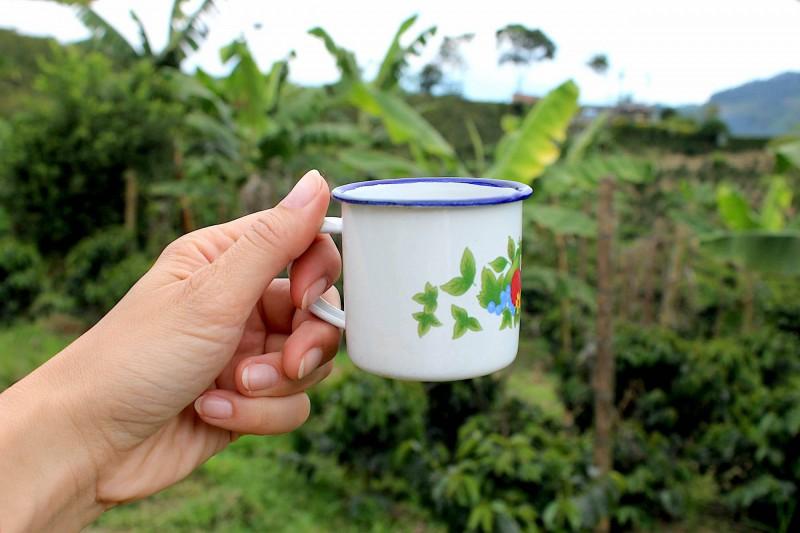 Šálek čerstvě pražené kávy přímo tam, kde byla vypěstována.