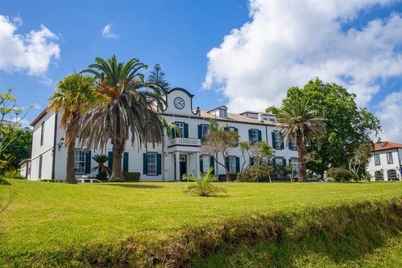 Dům se zelenými okenicemi a zahradou s palmami.