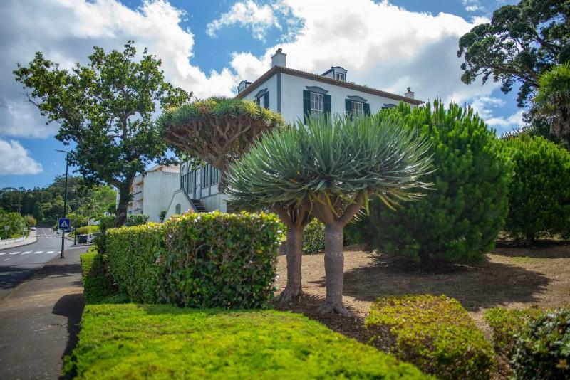 Dům se zahradou a palmami.