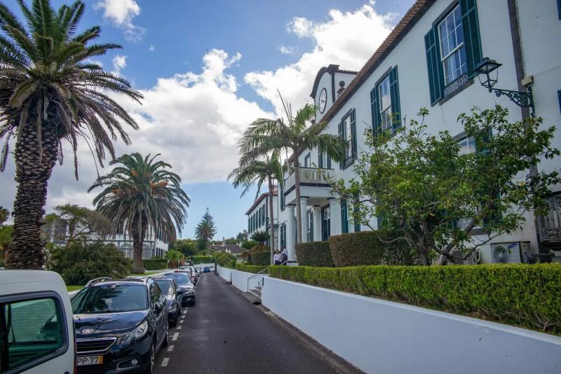 Ulice s palmami a bílými domy.