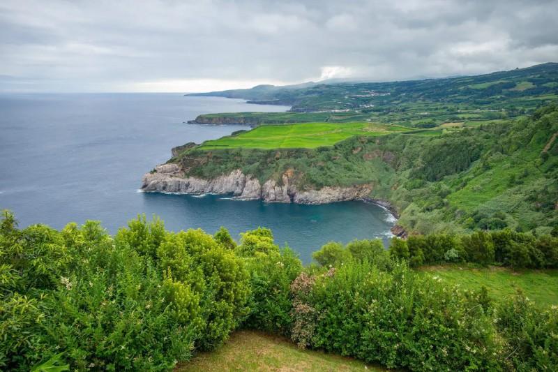 Pobřeží ostrova s nádhernou zelenou přírodou.