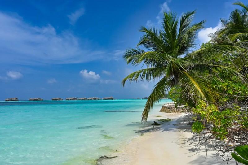 Nejkrásnější pláže ostrova Paradise.