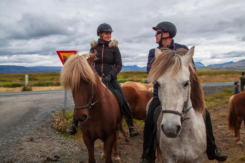 Islandští koně s jezdci.