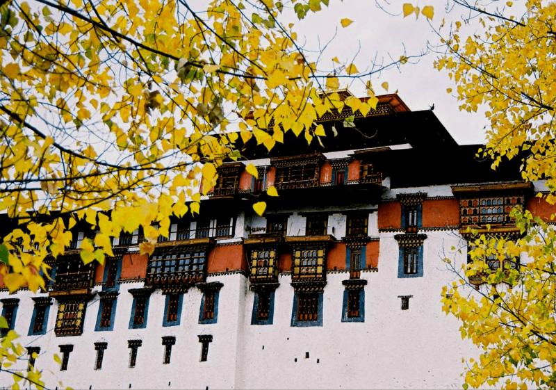 Jesenní pohled na pevnost dzong v Bhútánu