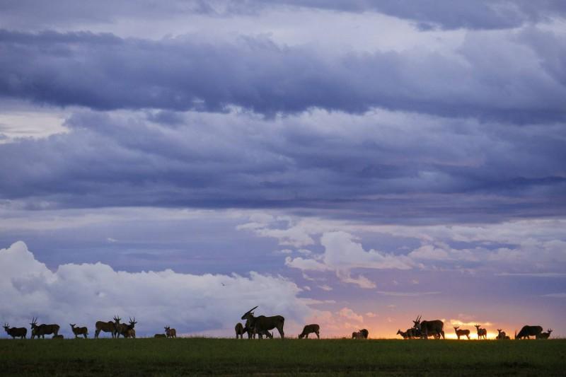 Západ slunce a putující mraky nad Masai Marou.