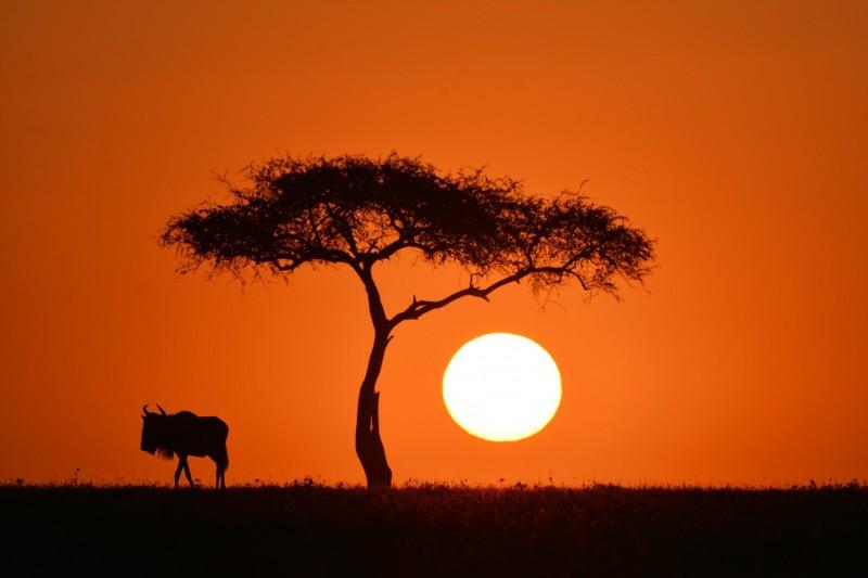 Dechberoucí západ slunce.