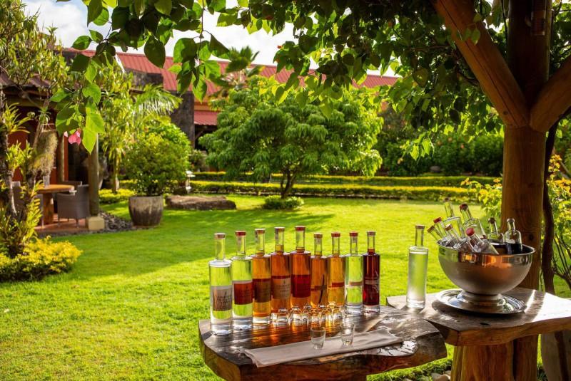 Ochutnávka rumu v zahradě destilérky.