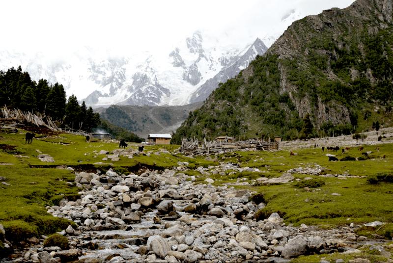 Pohádkové louky Fairy Meadows v Pákistánu