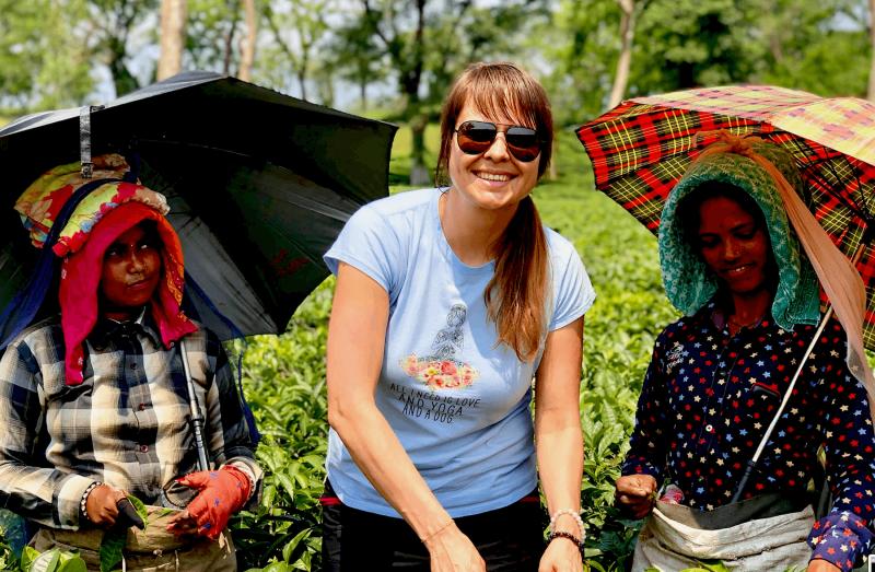Zběr čajovníku v Darjeelingu
