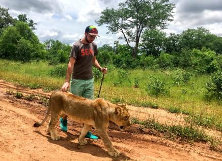 africké velké kočička fotkyafrické zralé porno video