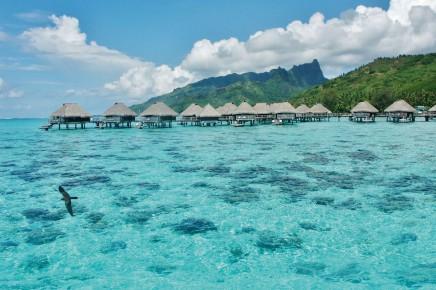 Poznejte Maledivy s CK SEN