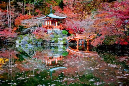 Krásné japonské zahrady pro vás budou velkým zážitkem