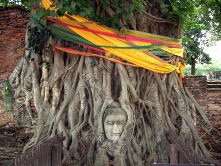 Symbol Ayuthayi