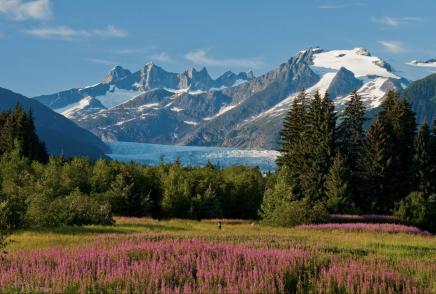 Aljašská přiroda Vás doslova pohltí
