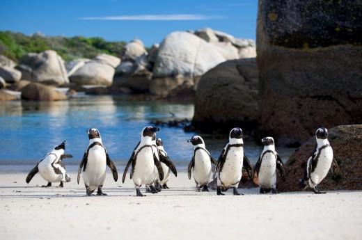 seznamování lokalit botswana randění s malými kluky