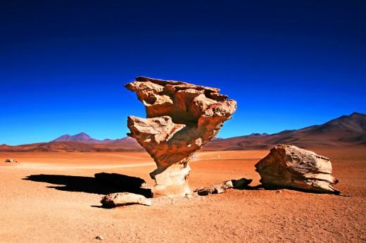 Kamenný strom na Altiplanu v Bolivii