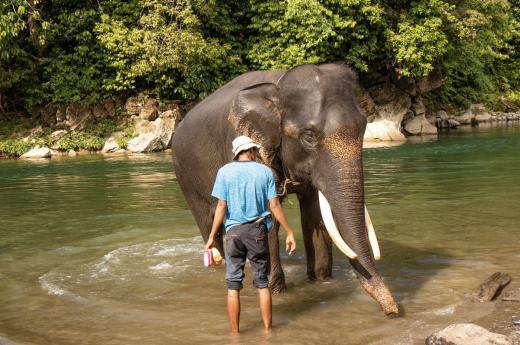 Poznáte život místních žijících v džungli