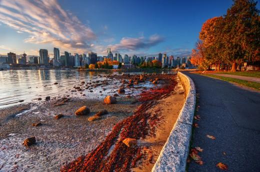 Toronto vybízí k procházkám