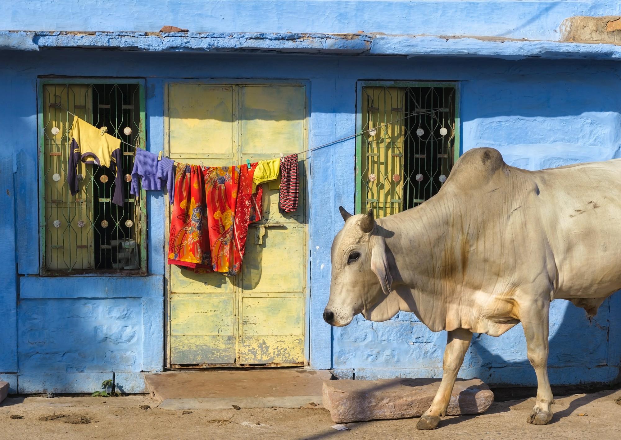 Vítejte v neuvěřitelné Indii