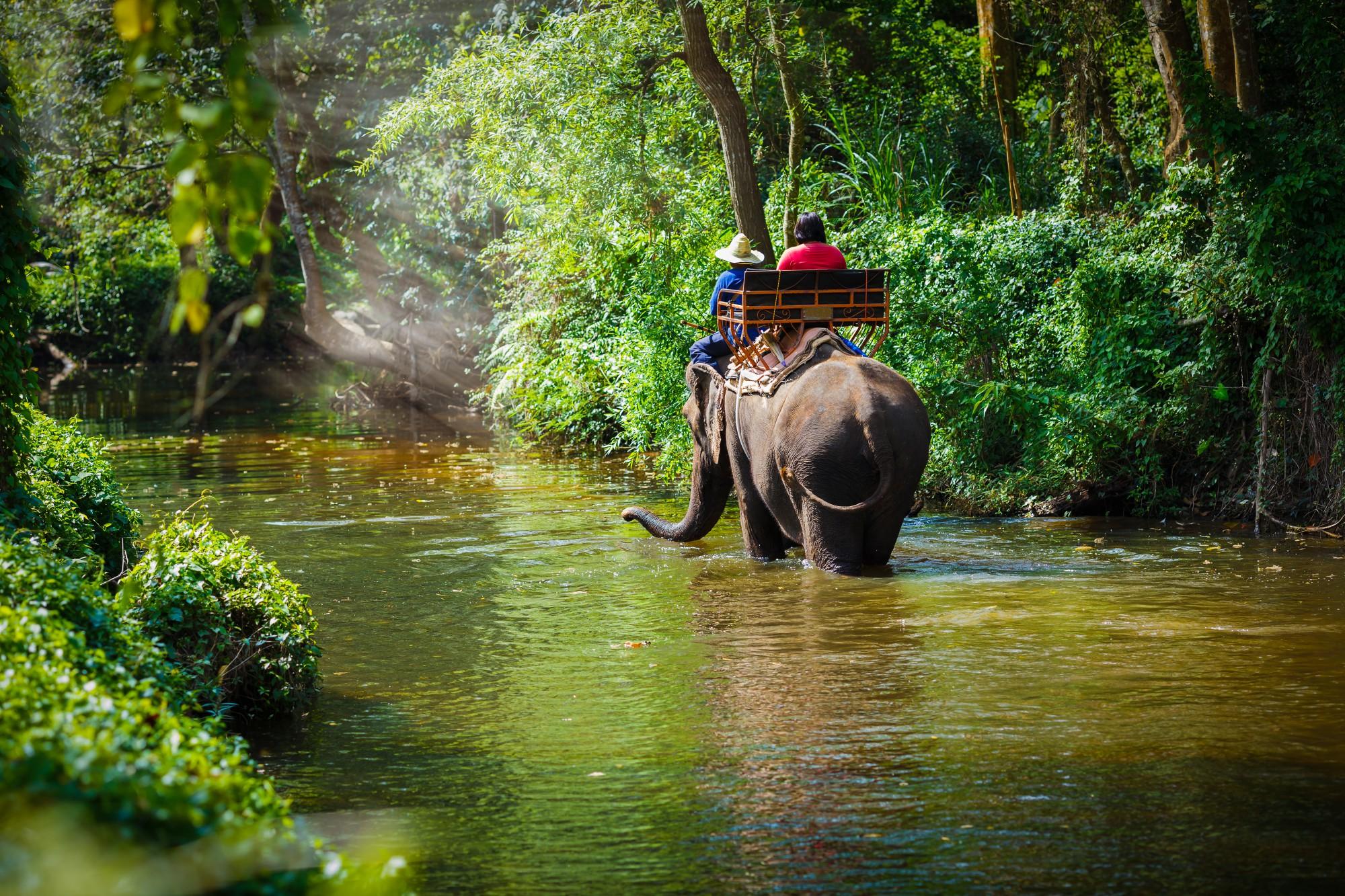 Vítejte v nádherné přírodě severního Thajska