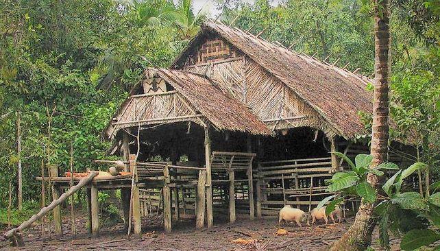 Uma – tradiční siberutské domy
