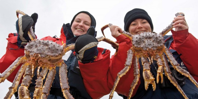 Krabí safari v Kirkenes