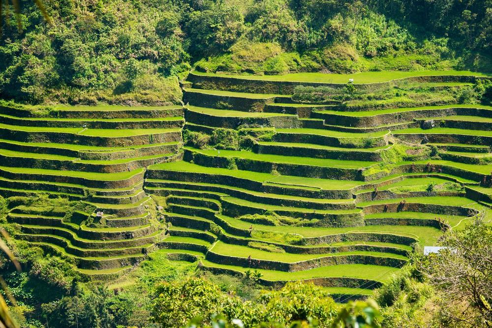 Rýžová pole Benaue jsou chloubou Filipín
