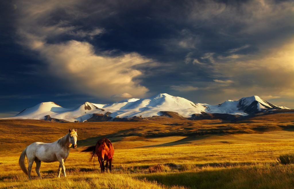 Mongolská příroda vám vyrazí dech