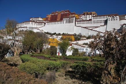 Tibetan seznamovací webové stránky