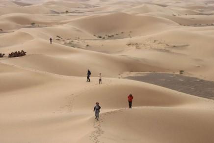 Písešné duny Khongorin Els, které skrývají mýtického červa s příznačným názvem Olgoj Chorchoj