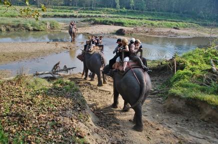 národní park Chitwan v Nepálu