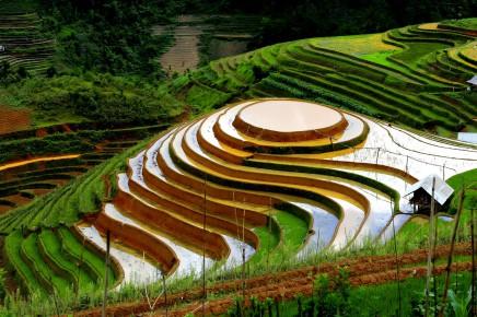 rýžové Terasy, Filipíny