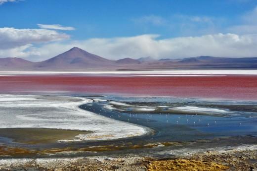 Jižní Amerika, Bolívie, Altiplano