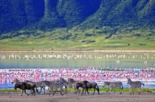 Tanzanie - Afrika