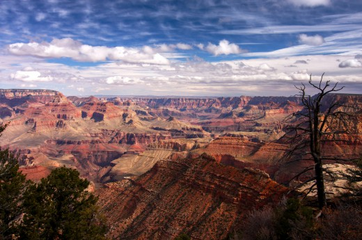 Grand canyon v USA